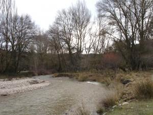 Curva del río Arba